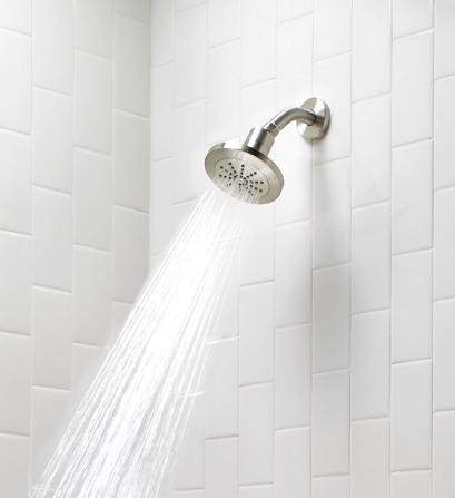 Danze 200 Water Intensity Shower Head