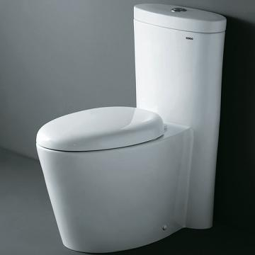 CO1009 Contemporary European Dual Flush Toilet From Ariel
