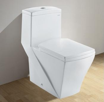 CO1018 Contemporary European Dual Flush Toilet From Ariel