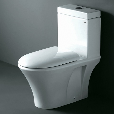 Contemporary European Style Dual Flush Toilet From Ariel