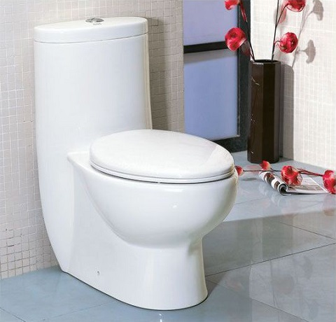 One Piece Eco Friendly Toilet With Extra Wide Glazed Trapway From Eago