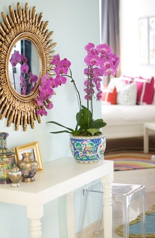 If You're Looking To Add Radiant Orchid To Your Decor, There's Really No Beating The Real Deal (by Caitlin Wilson)
