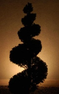 Silhoutte Lighting Can Turn Your Statuary And Topiary Into Cool Shadow Shapes