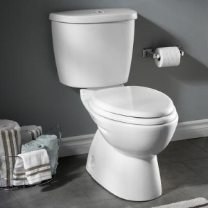 flowise dual flush elongated toilet